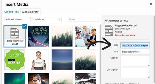 Hướng dẫn cách để hiển thị file PDF trong WordPress