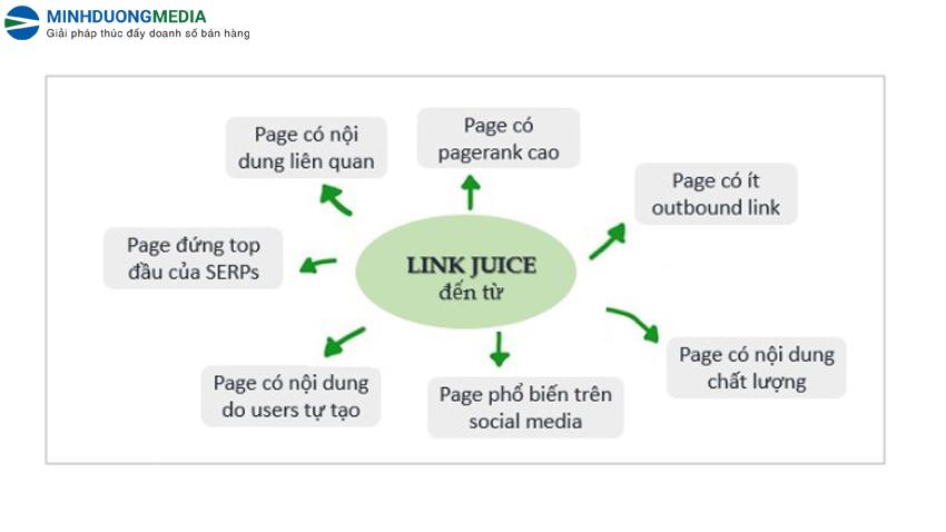 Các nguồn nên lấy Link juice